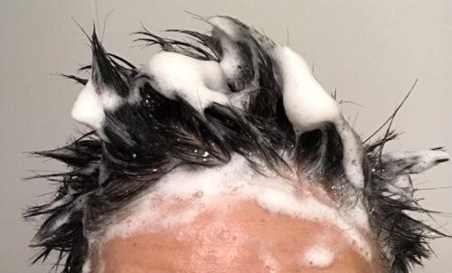 プレミアムブラックシャンプー 髪の毛